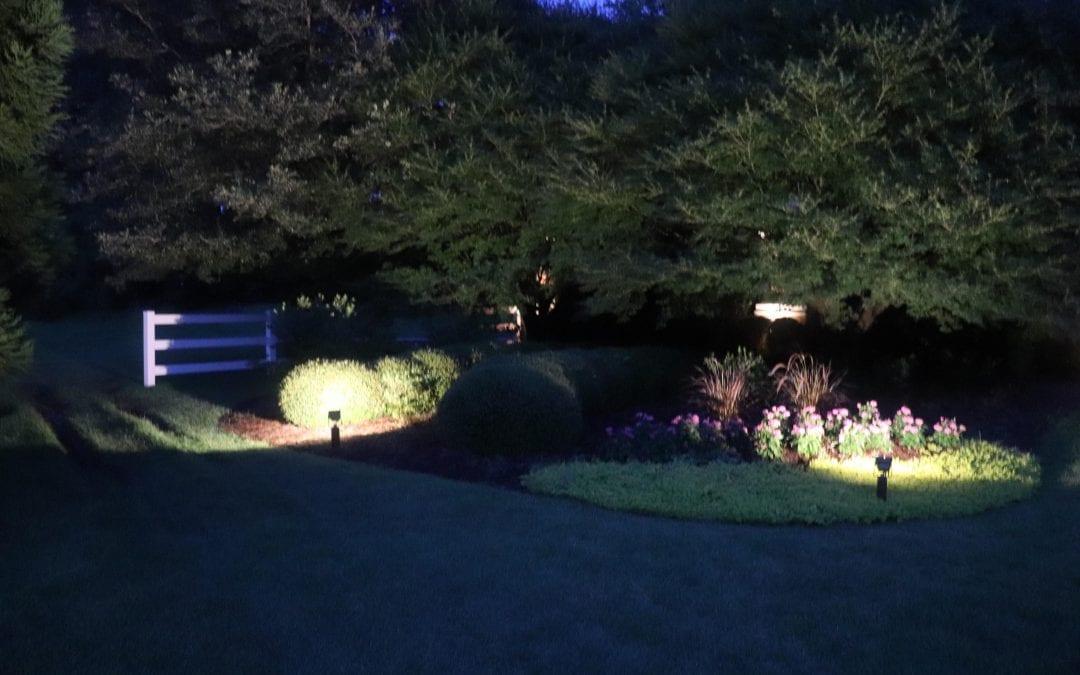 Garden Lighting Tips for Beginners